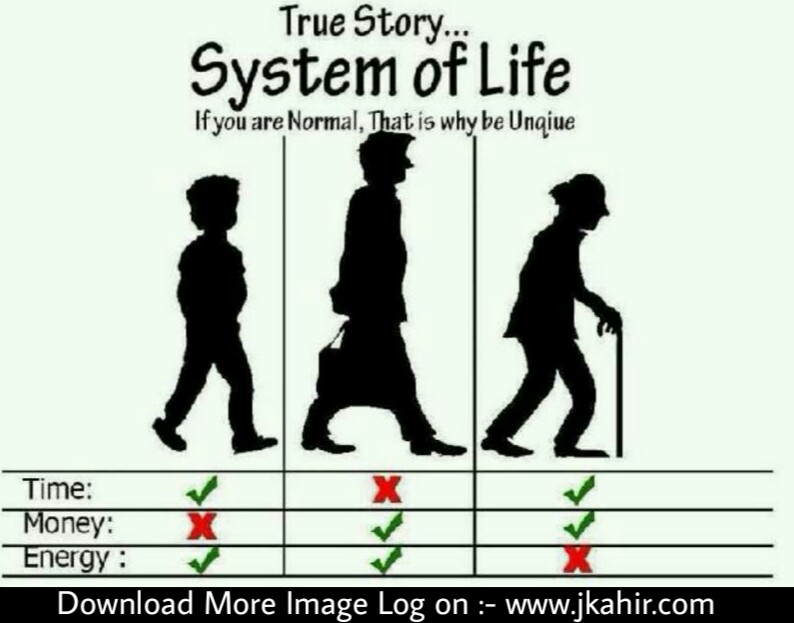 True Story System Of Life
