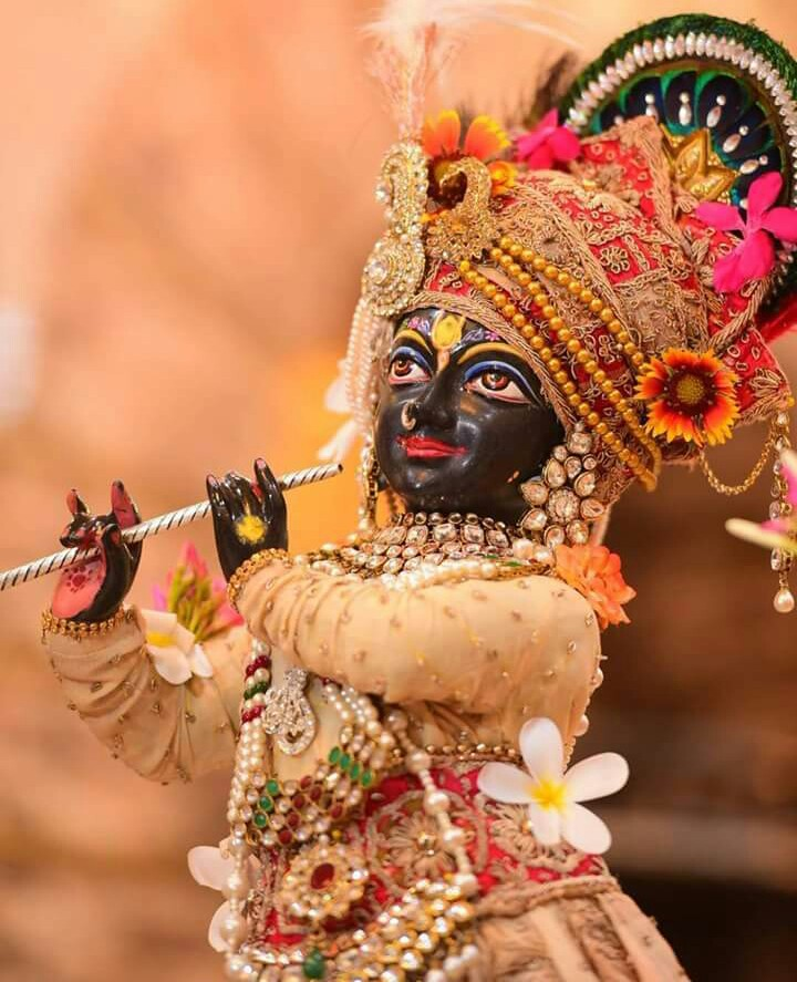 Jai Shree Krishna12