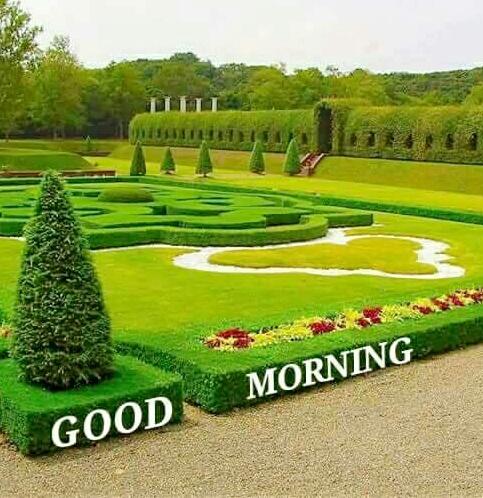Good Morning with Beautiful Garden