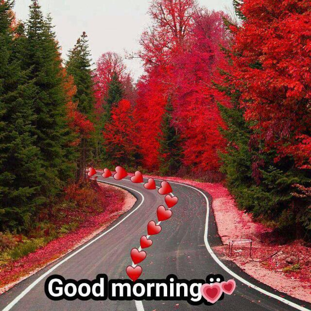 Good Morning with Love Running Picture
