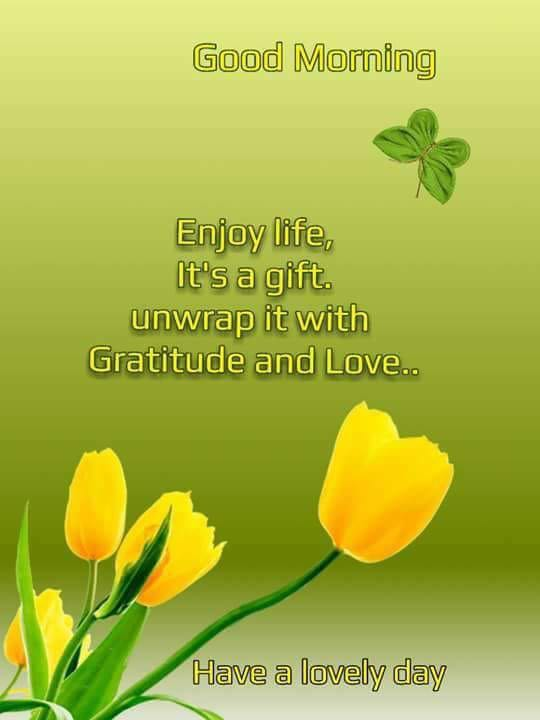 Enjoy Life, it's a Gift. Unwrap it With Gratitude And Love