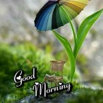 Happy Monsoon Good Morning